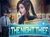 The Night Thief
